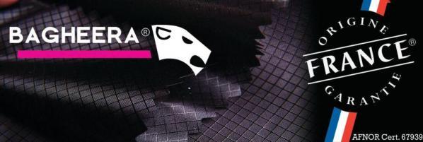 Logo bagheera 2b 1